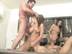 swingers and swappers 5 scene 3
