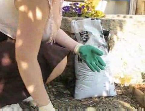 Natural Young Busty Sext Wife Flashing In Garden